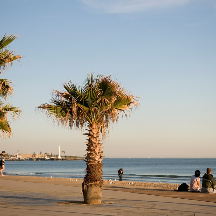 Couple sitting near palm trees and watching the sun setting on St Kilda Promenade with St Kilda marina in the distance